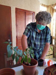 Xisco cuidando las plantas