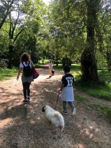 Niños en el parque