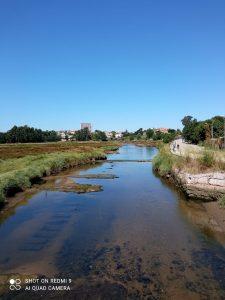 Foto de paisaje de la ruta